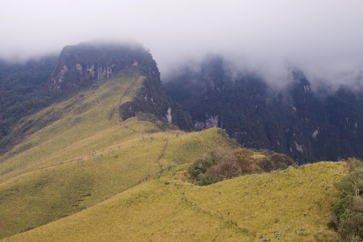 Polku vie ruohoisten kumpujen yli kohti pilvisiä kalliotorneja.