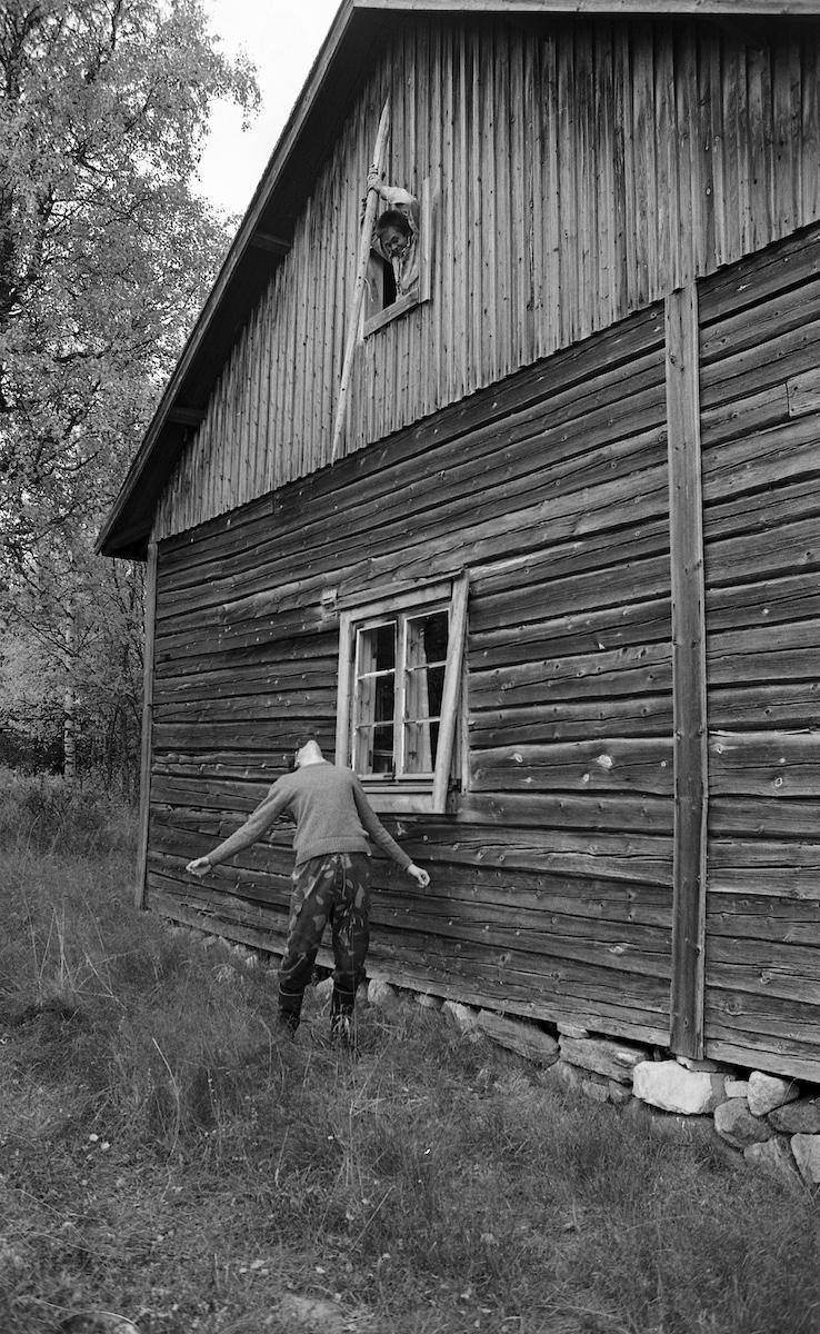 Yläkerran ikkunasta uhataan pihalla seisojaa heinäseipäällä.