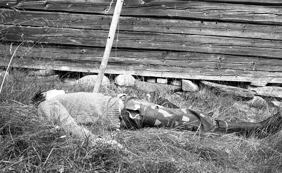 Mies makaa seivästettynä ruohikossa talon vieressä.